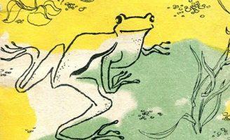 Квакша — Паустовский К. Рассказ про Таню и лягушку.