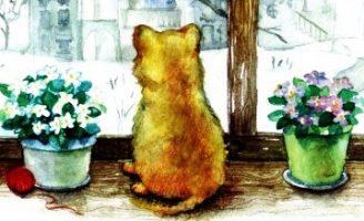 Морозное окошко — Абрамцева Н. Сказка про котенка. 0 (0)