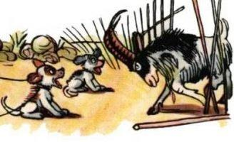 Не ходи, козел, в огород — Сутеев В.Г. История в картинках.