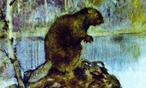 Новые знакомые - Скребицкий Г. Рассказ про небольших животных.
