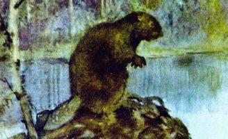 Новые знакомые — Скребицкий Г. Рассказ про небольших животных.