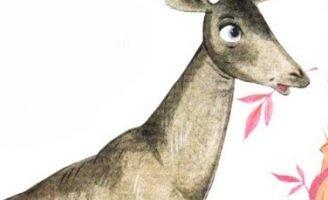 Окапи — Заходер Б. Стихотворение про неизвестное животное.