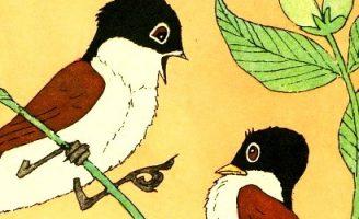 Птица неба не боится — Берестов В. — Мишкины книжки