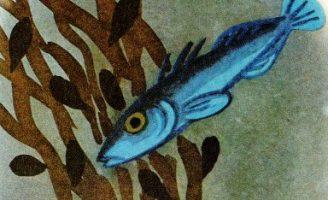 Рыбка строит дом — Берестов В. Стихи для детей Берестова В.