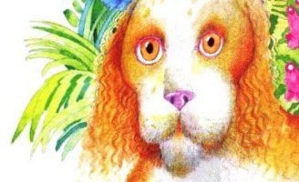 Собачкины огорчения — Заходер Б. Читайте онлайн. 0 (0)