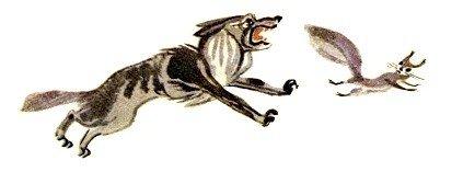 Волк и белка - Толстой Л.Н.