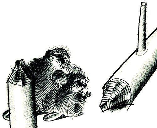 Дремучий медведь - Паустовский К.