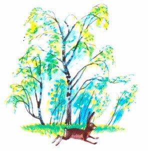 Лесной голосок - Скребицкий Г.