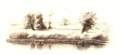 Золотой линь - Паустовский К.