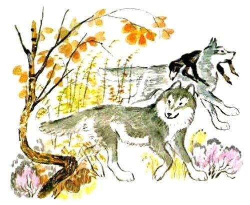 Как волки учат своих детей - Толстой Л.Н.