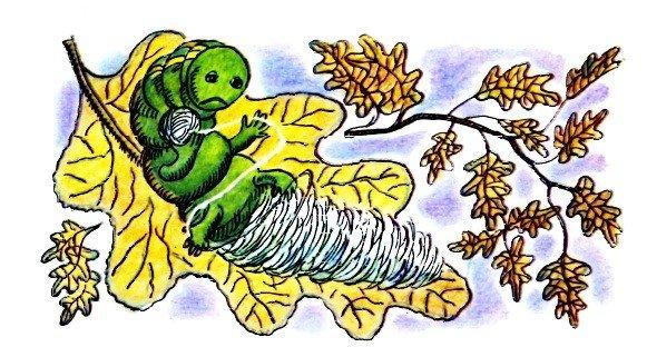 Честное гусеничное - Берестов В.