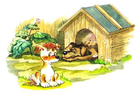Сказка про щенка и старую тапочку - Абрамцева Н.