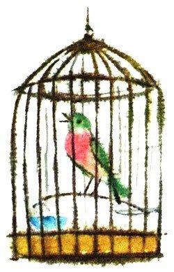 Волшебная птица - латышская сказка